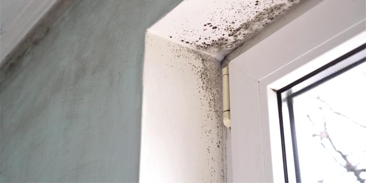 Mejora de la eficiencia energética de la envolvente térmica: ventanas y huecos