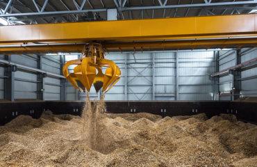 Energía biomasa: ventajas y desventajas como fuente de energía